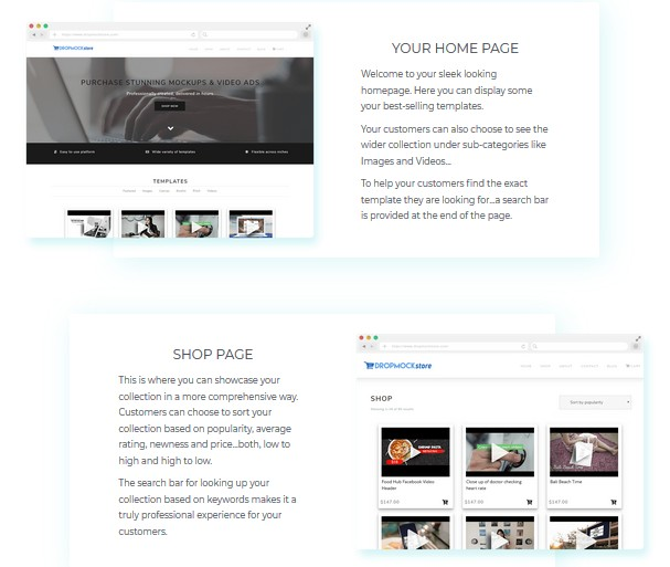 Fusion by DropMock Internet Marketing Store by Jamie Ohler