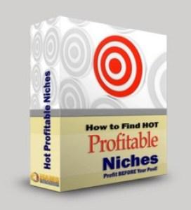 Hot Profitable Niches WSO by David Perdew