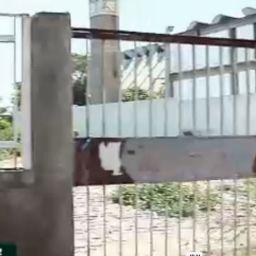 Prédios públicos abandonados tornam-se bocas de fumo em Teresina