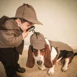 A pedalada golpista do TCU e o cachorro de Sherlock Holmes