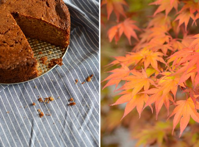 Ginger Cake and Leaves