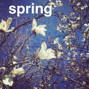 Nevada City Spring