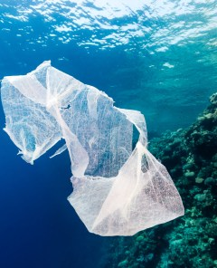 8 Pieces of Plastic to Stop Using Right Now