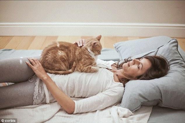 ชีวิตคุณจะ เปลี่ยน ไป 10 ประการ เมื่อคุณรับเลี้ยงแมว 🐱🐈👨🏻👩🏻