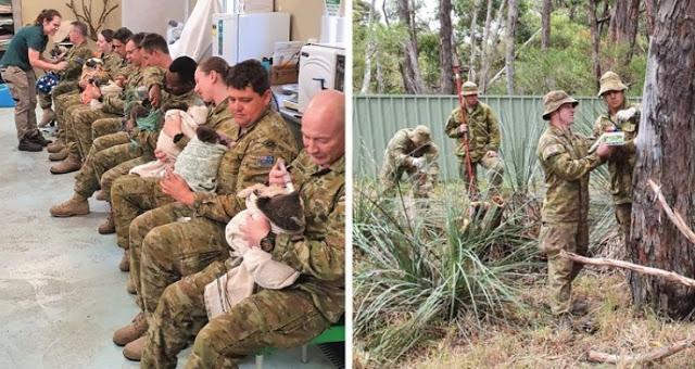 """ทหารออสเตรเลียผู้มีเมตตา """" สละเวลา """" พักเหนื่อยมาดูแล หมีโคอาล่า ที่ได้รับผลกระทบจากไฟป่าครั้งใหญ่ 👮🏻♂️🐨🤲🏻🌲🔥🇦🇺"""
