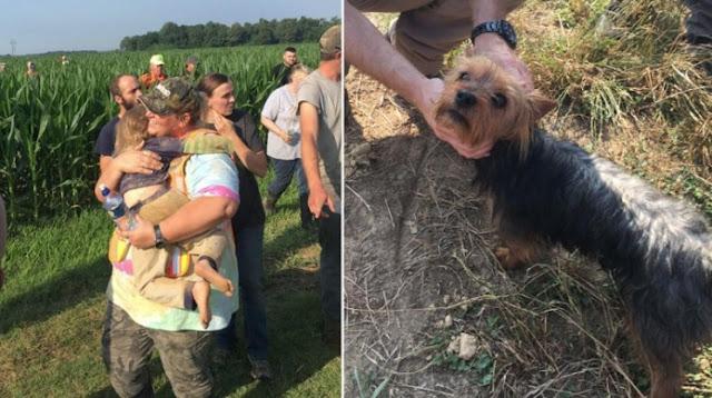 """สุนัขช่วยชีวิต เด็กหญิงวัย 3 ขวบของครอบครัวที่ """" หายตัว """" ไป 🐶🐕👧🏻🤝🤲🏻🏡❤️🇺🇸"""