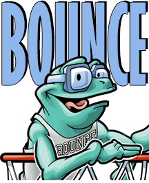 bounceinset_21