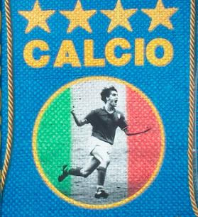 Calcio Cover USE