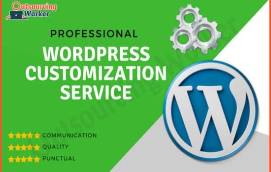 I will provide professional wordpress customization
