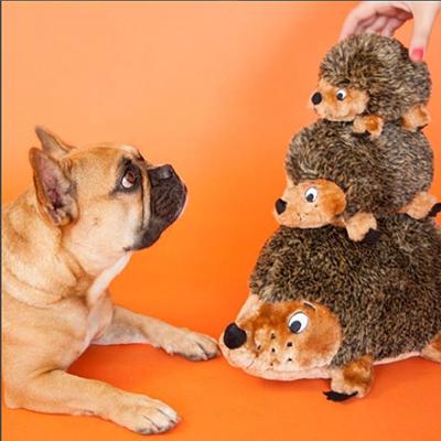 french bulldog with hedgehogz