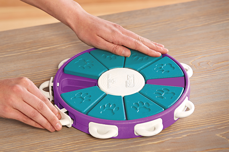 interactive dog toy and game