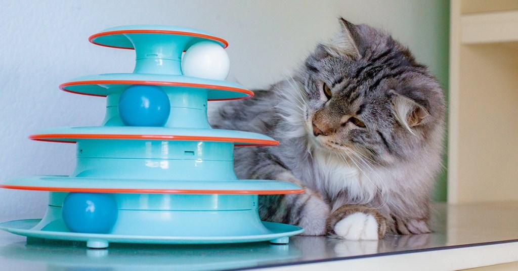 interactive-cat-toys-chase-meowtain
