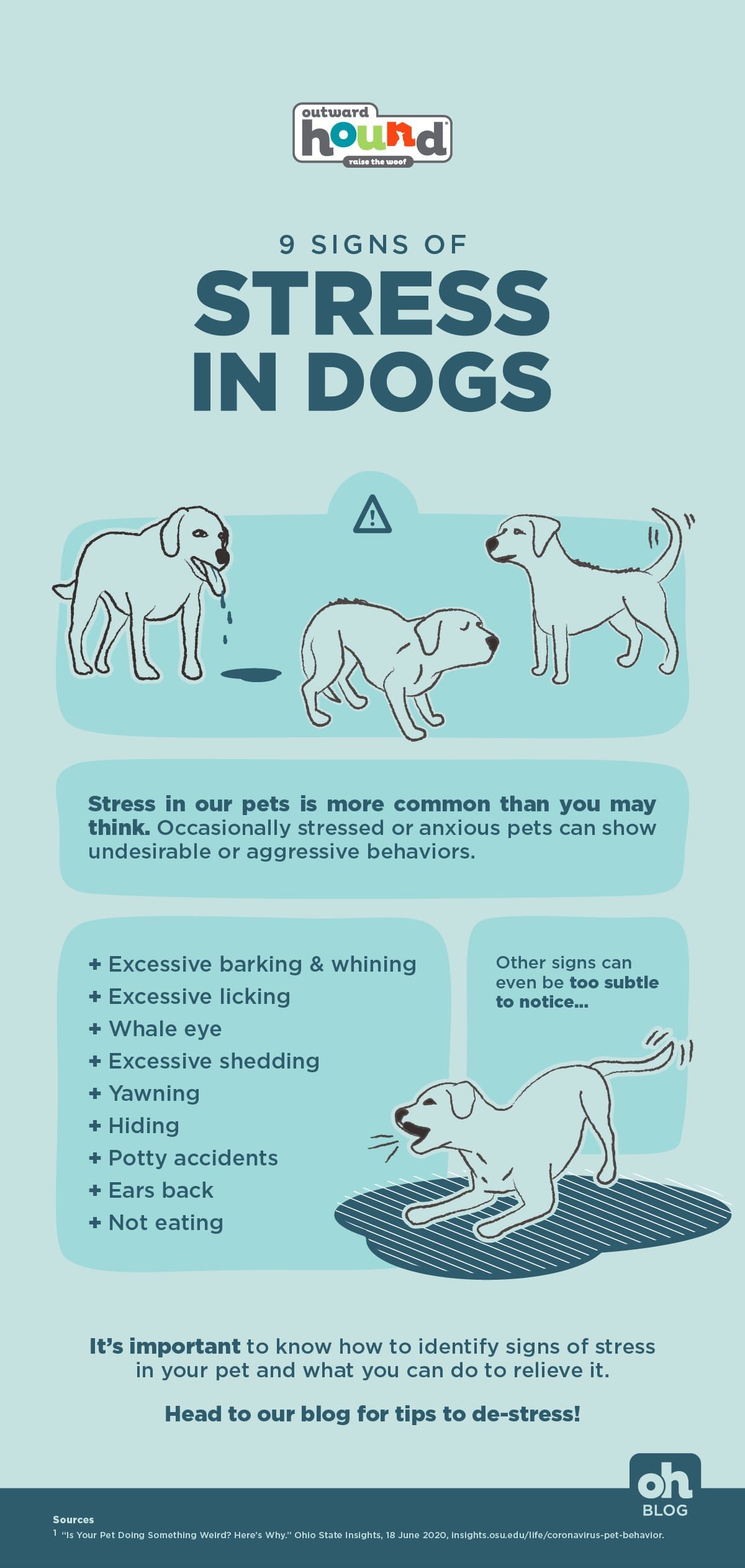 signs of stress in dogs infographic