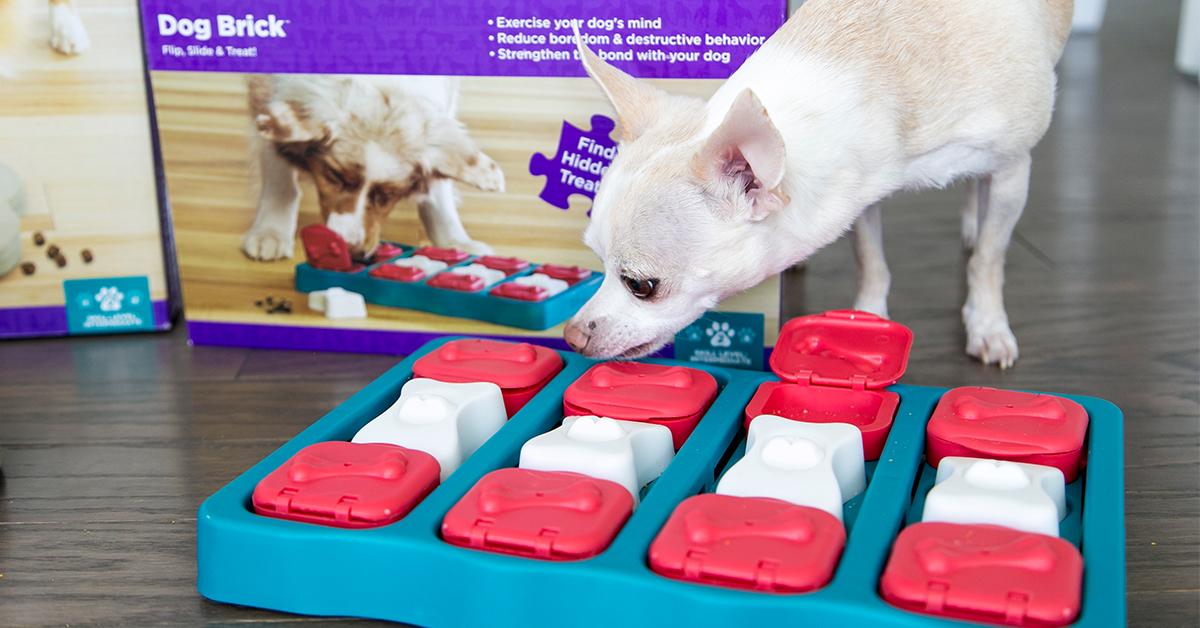 dog brick puzzle game