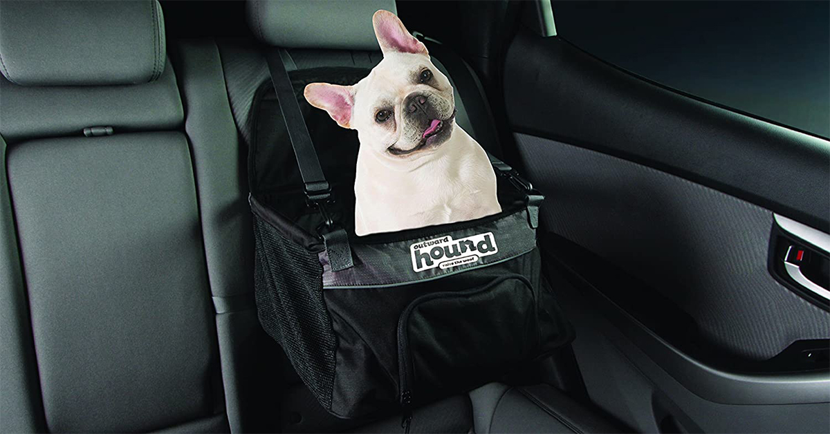 the PupBoost Car Seat is essential for a road trip with a dog