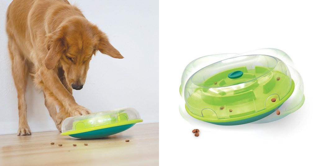 wobble-bowl-golden-retrievers