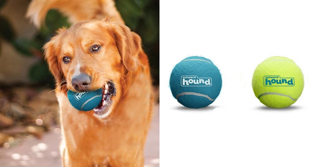 squeaker-ballz-dog-toys