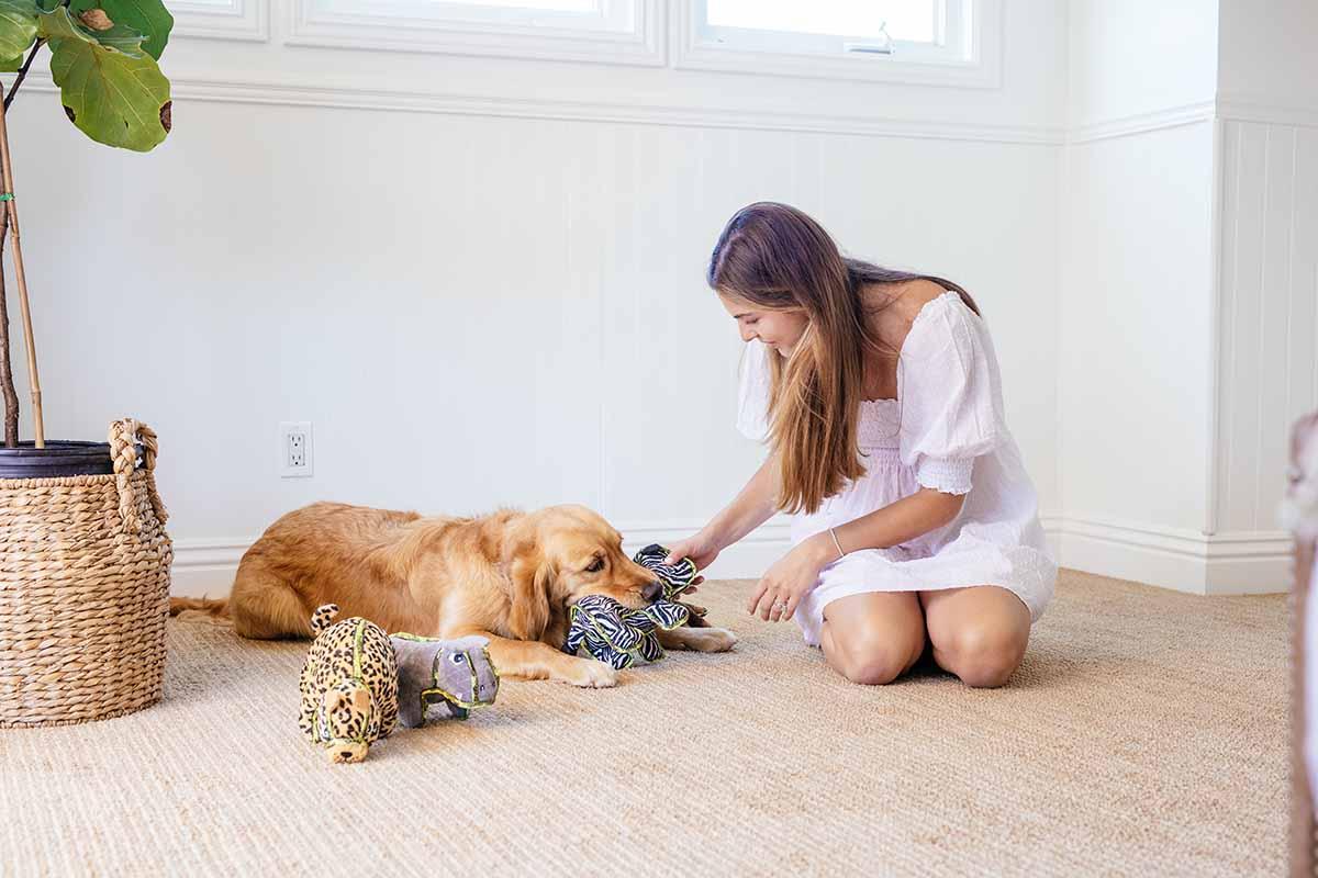 dog playing with human