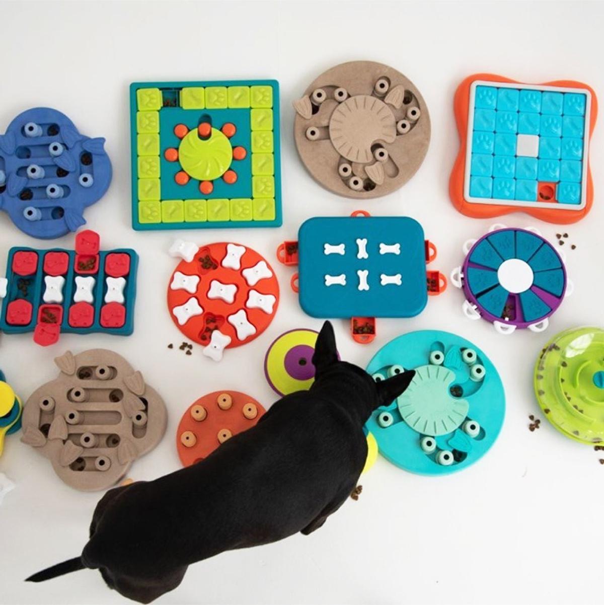 puzzle race