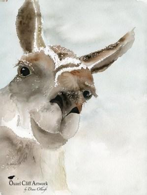 Mari in the Snow
