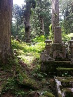 Okunoin cemetery, Koyasan, Japan. Le cimetière Okuno-in, Mont Koya, Japon.