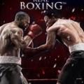 Real Boxing-CODEX