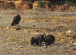 Kevin_Carter_Starving_Child_Pulitzer.jpg