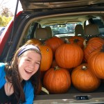 pumpkins, Halloween, jack-o-lanterns