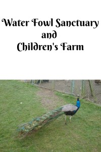A trip to a waterfowl sanctuary - Water Fowl Sanctuary and Children's Farm