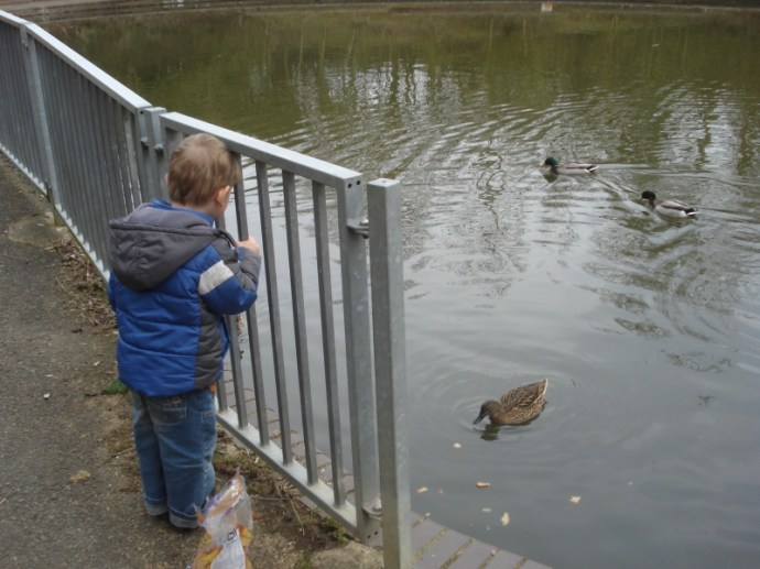 Simple things - feeding the ducks