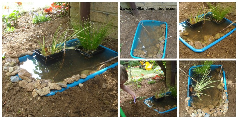 Our wildlife pond challenge completed