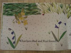 Bud-Roos-Spectacular-Adventures