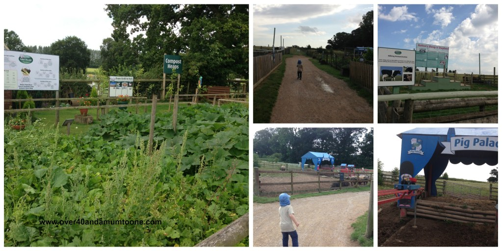 Hatton Country World, Hatton Adventure Farm Think Food and Pig Palace