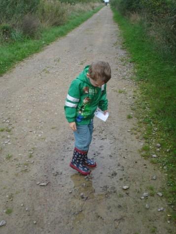 Otmoor Nature Reserve
