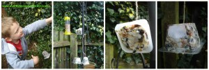 making cakes for the birds, Big Garden Birdwatch is this weekend