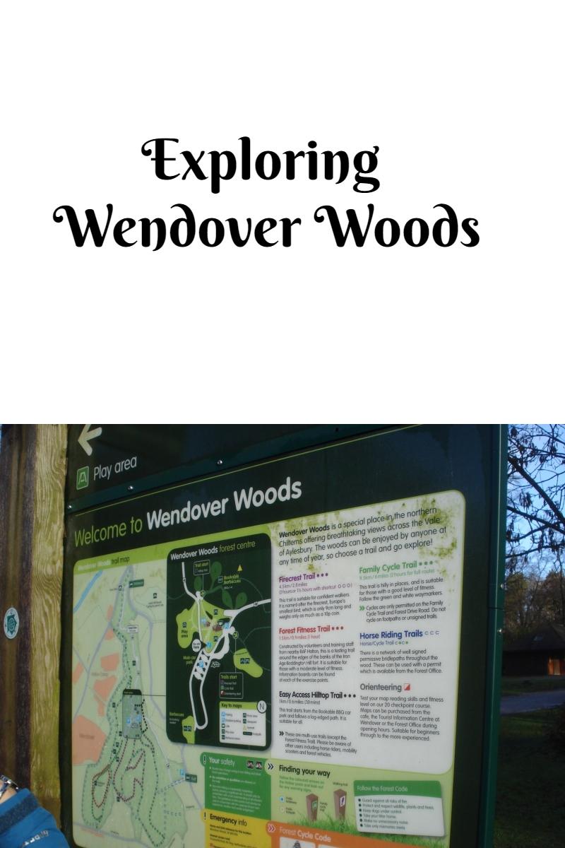 Exploring Wendover Woods