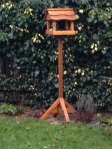 Big Garden Birdwatch, RSPB