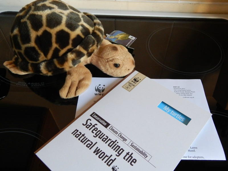 TribePlay are working with the World Wildlife fund to support their 'Adopt a Turtle' scheme by purchasing turtle adoptions for Toto fans. The support helps fund their essential work to halt the drowning of marine turtles entangled