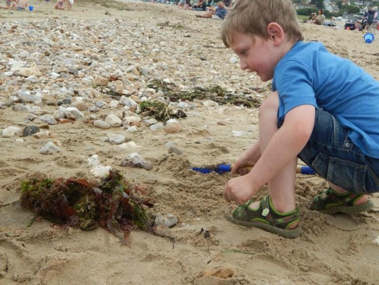 fun on the beach at Charmouth