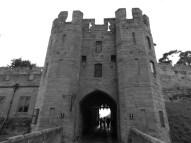 Monkey returns to Warwick Castle