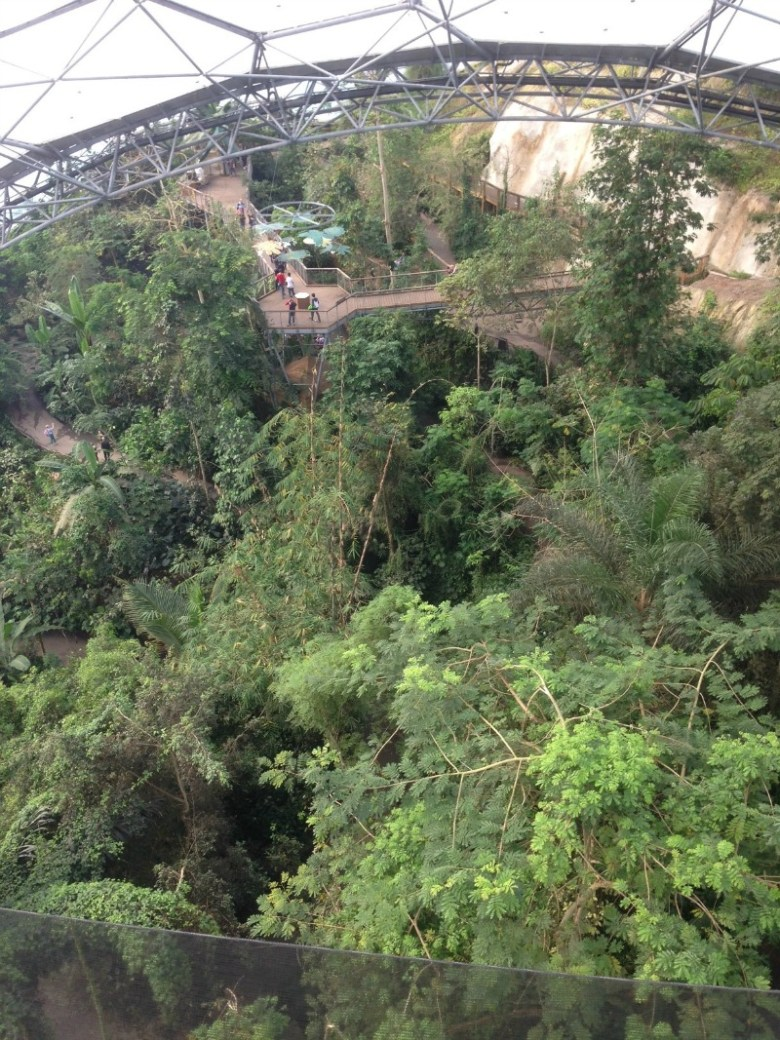Eden Project Rainforest Biome