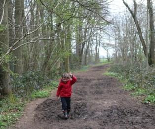 A trip to Stoke Wood