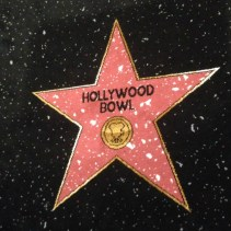 A family trip to Hollywood Bowl Oxford