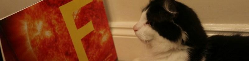 Brewster goes to school with Whiskas Kitten Kollege