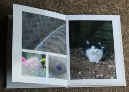 Saving memories with a Saal Digital photo book
