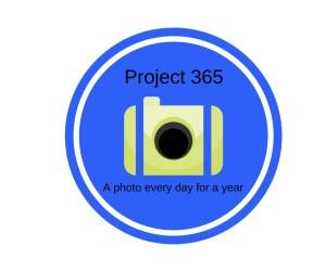 Project 365 2017 Week 19