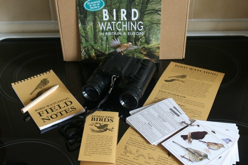 Bird Watching with Green Board Games