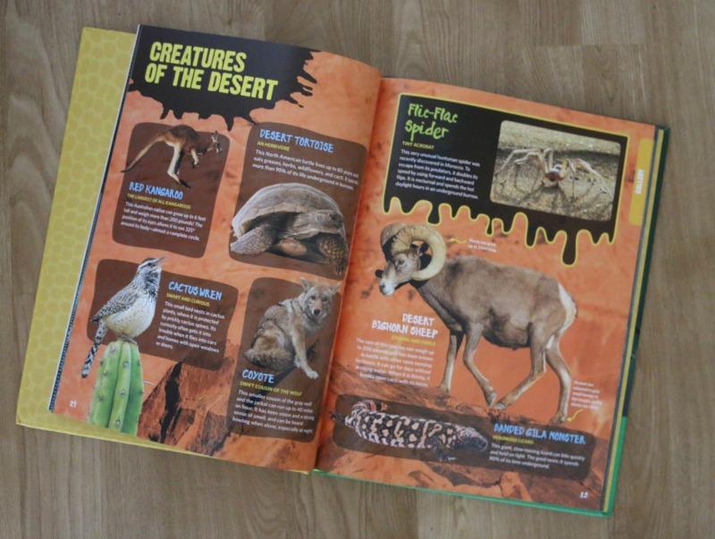 Strange, Unusual, Gross and Cool Animals