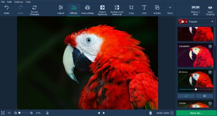 How to Enhance Pictures with Movavi Photo Editor