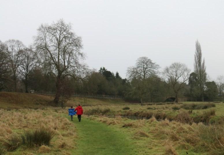 Deer spotting at Charlecote Park